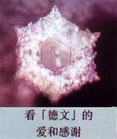 神奇:善的讯息可以产生美丽的水结晶 - 莲池佛地 - 莲池佛地